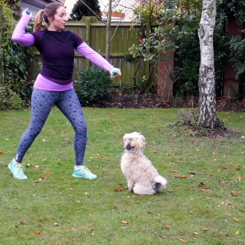 dog workout