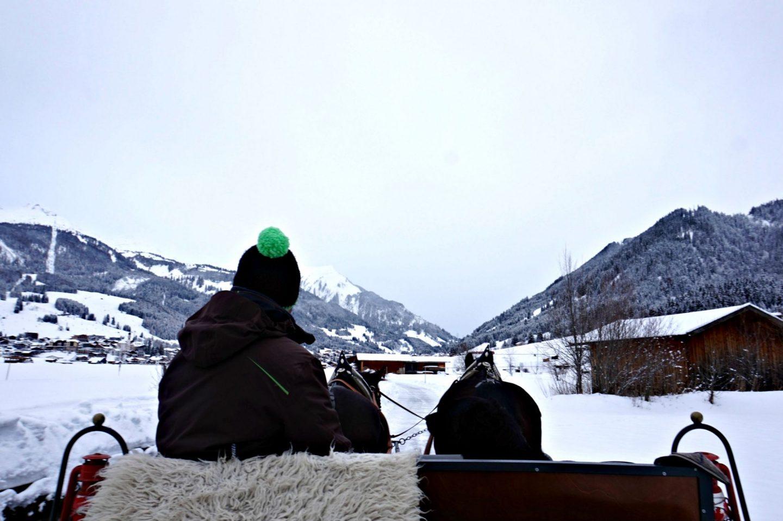 horse snow sledging