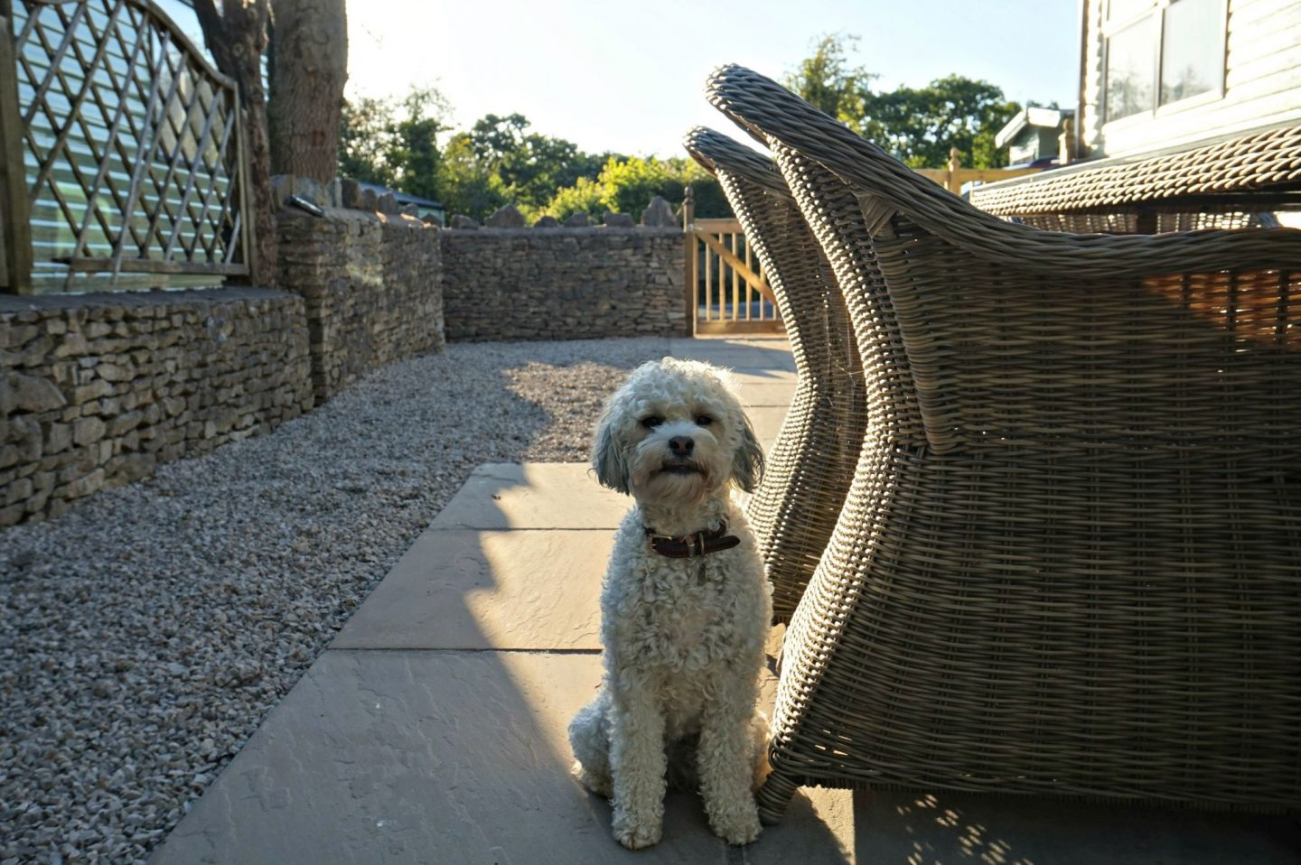 Holgates Silverdale holiday homes dogs